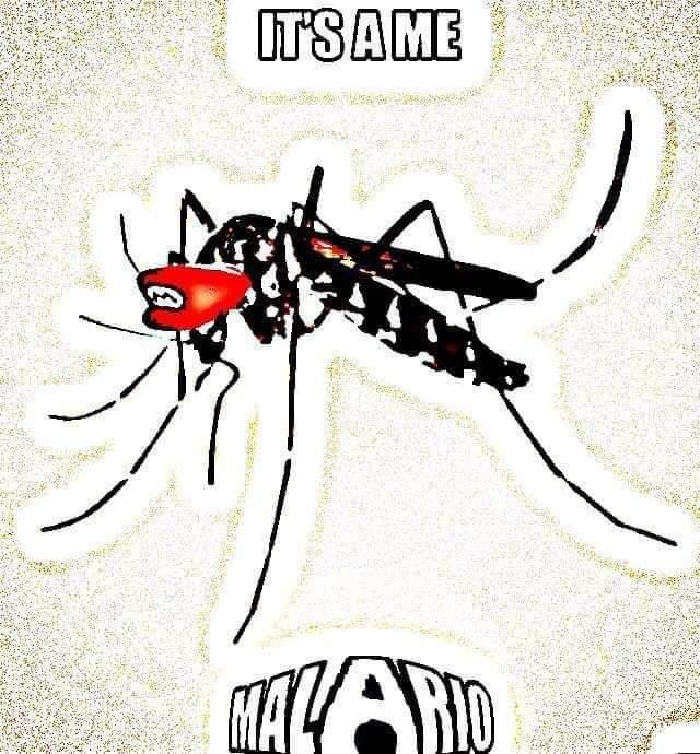 Rindo sangue - meme