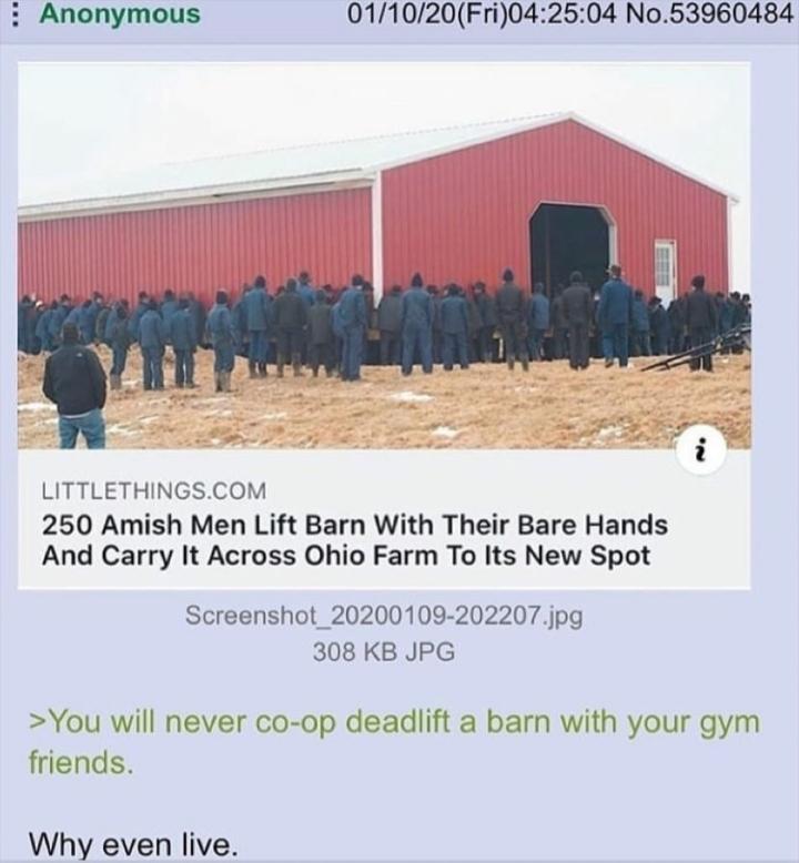 Do u even lift bro - meme