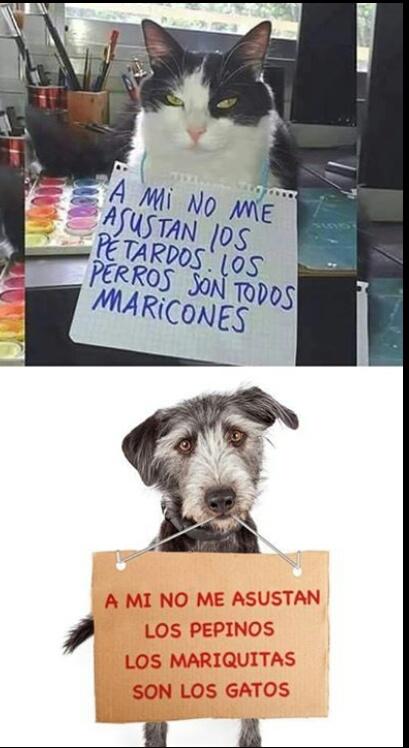 Vivan los perros - meme