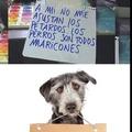 Vivan los perros