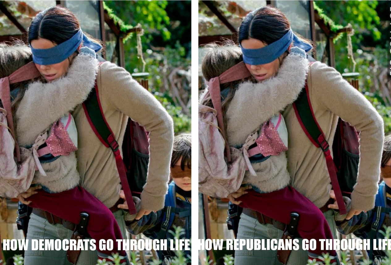 Republican and Democrats Bird Box - meme