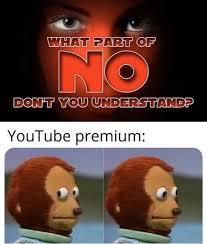 WHY YouTube premium, WHY - meme