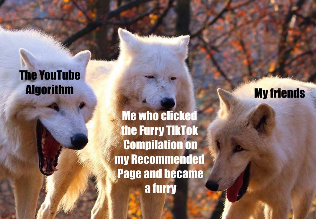 Furry - meme