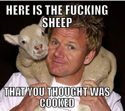 Gordan Ramsey Sheep - meme