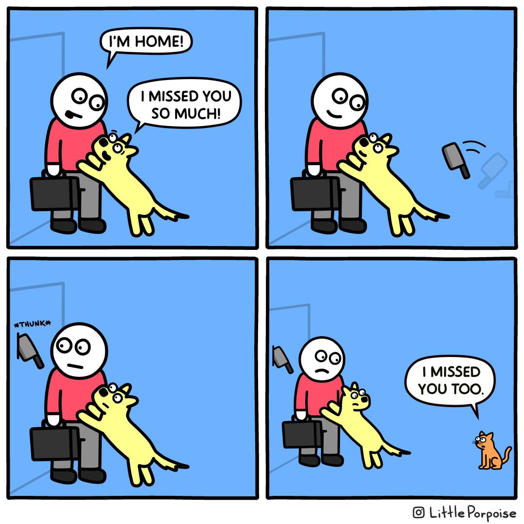 Cats. Gotta love em - meme