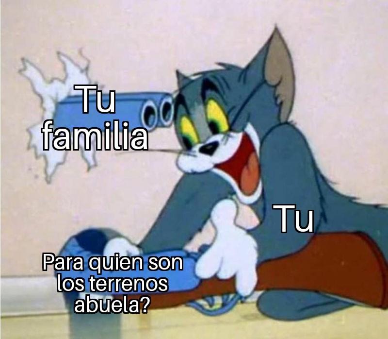 Tipica pelea - meme