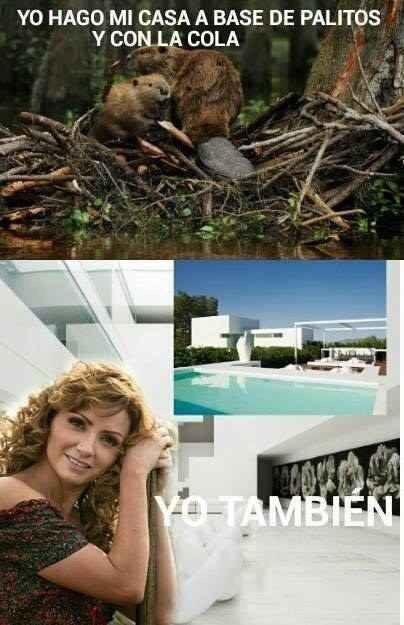 """la primera """"Dama"""" de México - meme"""