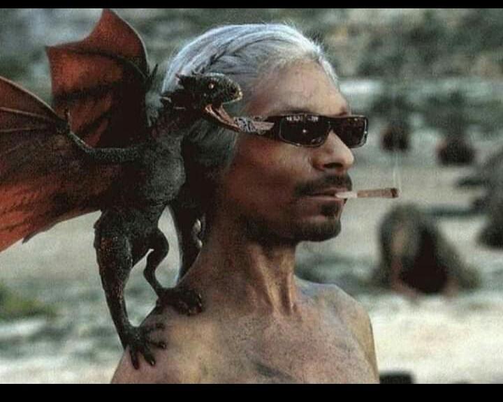 A mae dos dragões - meme