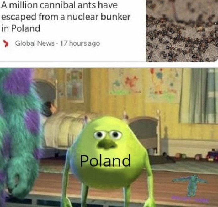 You better be worried Poland - meme