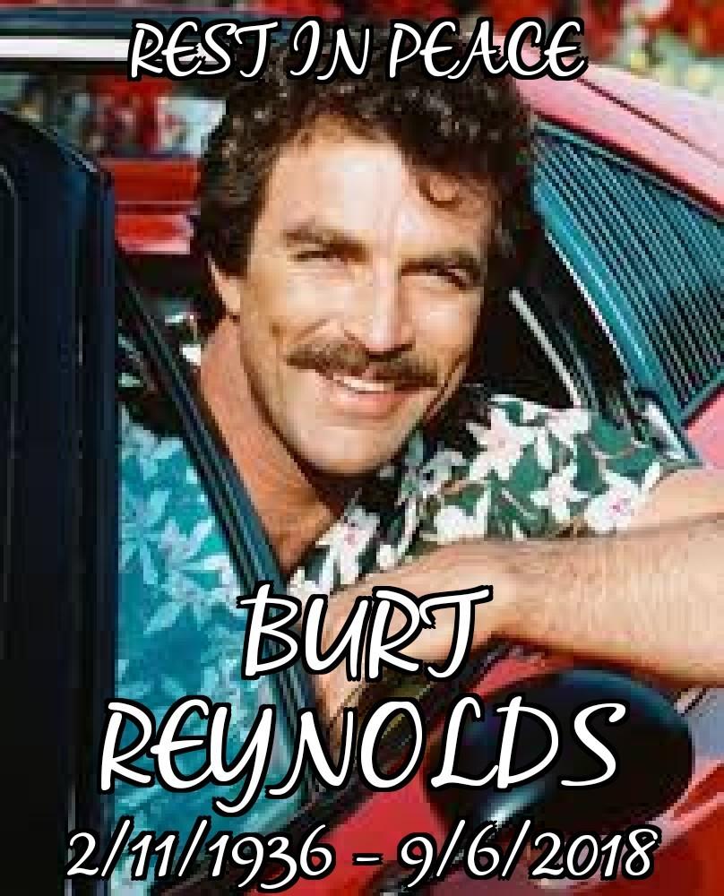 RIP Burt - meme