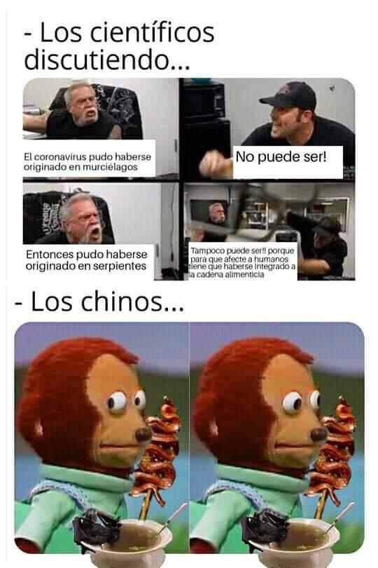 Mono tonto... - meme