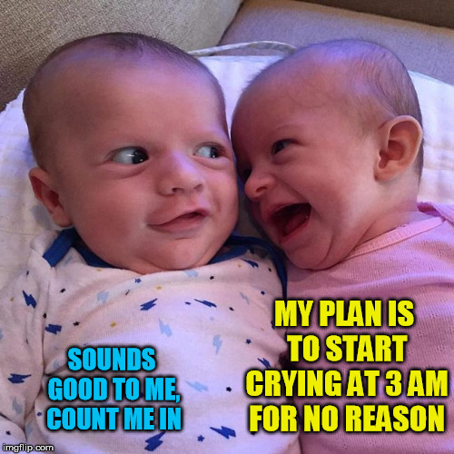 Babies plotting - meme