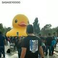 Ataque a los patos gigantes xdxd