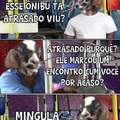 Mingula