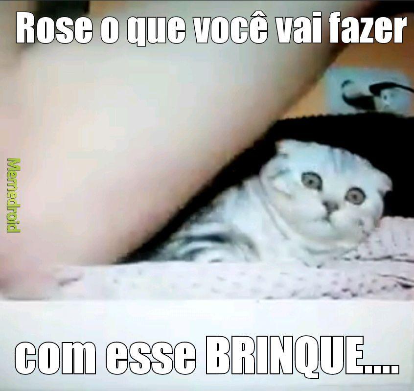 Porra Rose - meme