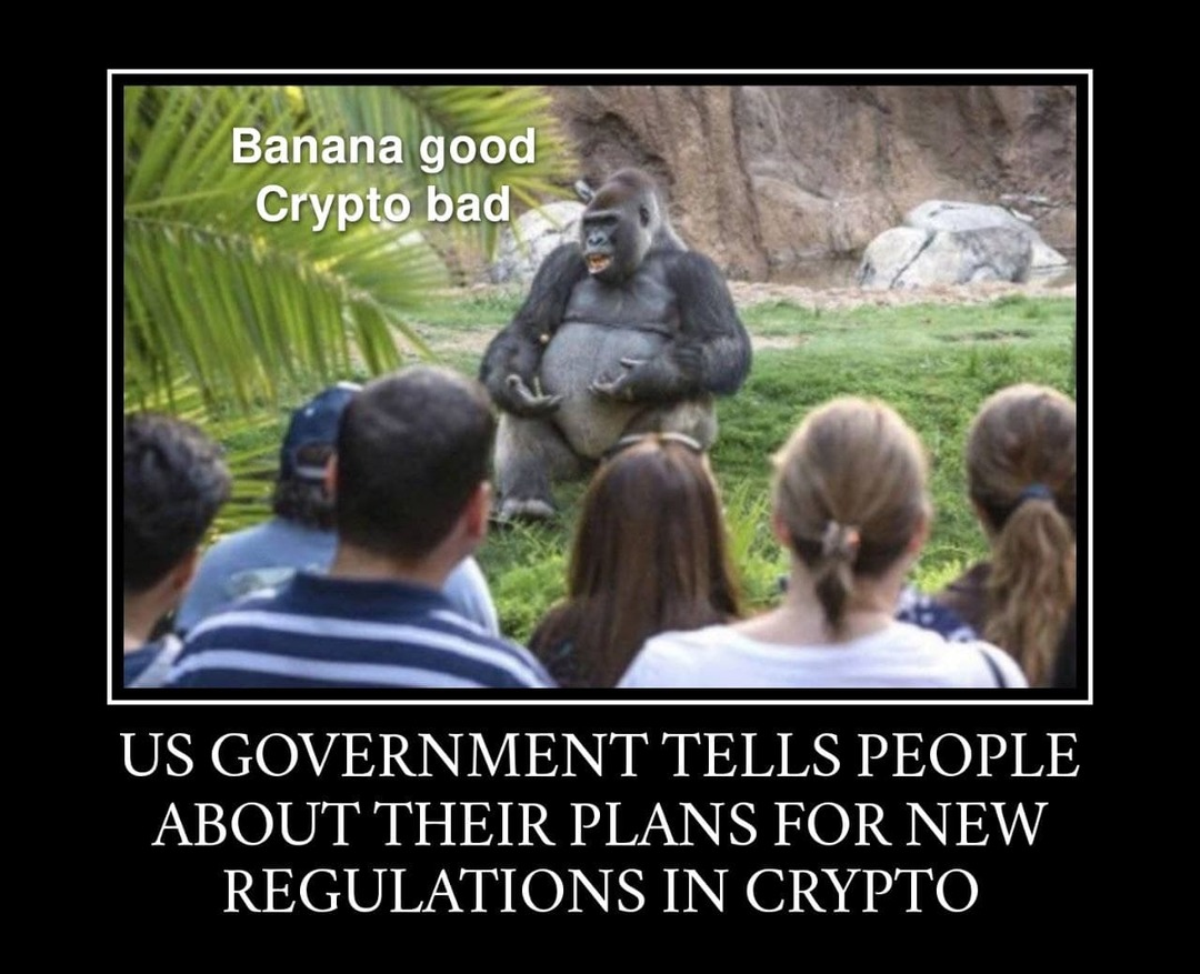 US government and crypto currency - meme