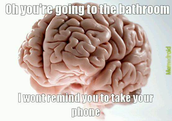 Fuck you brain - meme