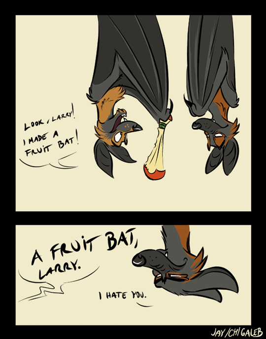 Don't make me hit you with a fruit bat. - meme