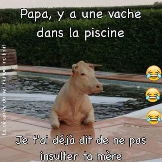Vache?Mère? - meme