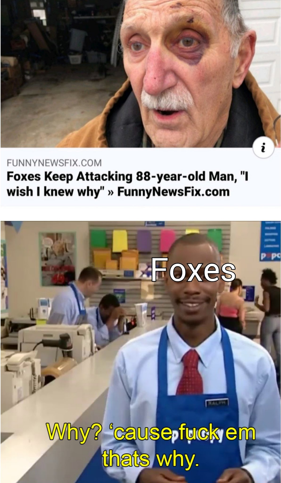 Angry foxes - meme