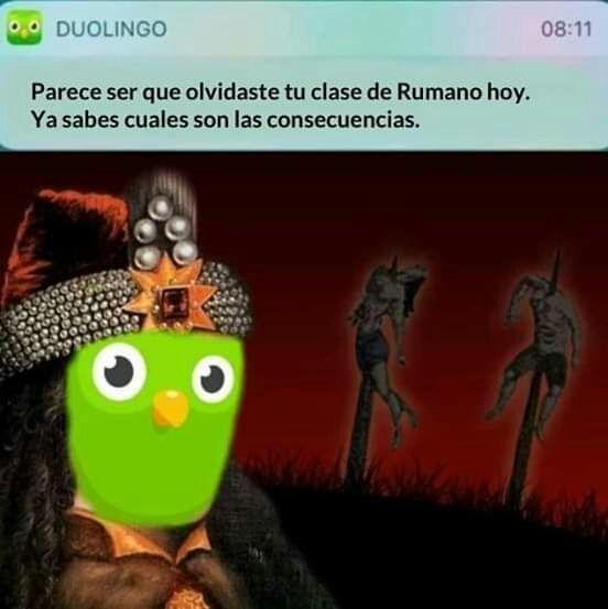 Duolingo noooo!!!!!! - meme