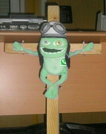whatsapp frog - meme