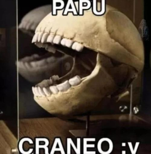 Papu craneo :v - meme