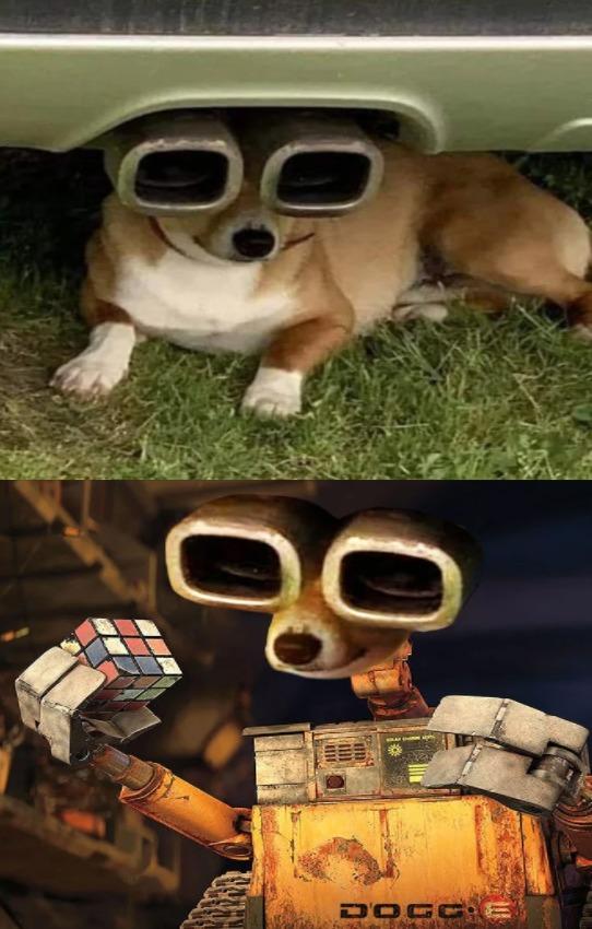 DOGG-E - meme