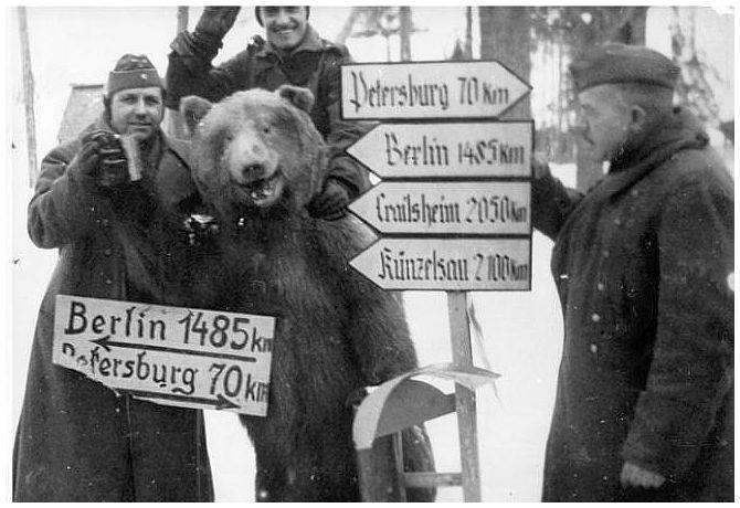 Faire connaissance avec ton ami l'ours en pleine campagne Russe. - meme