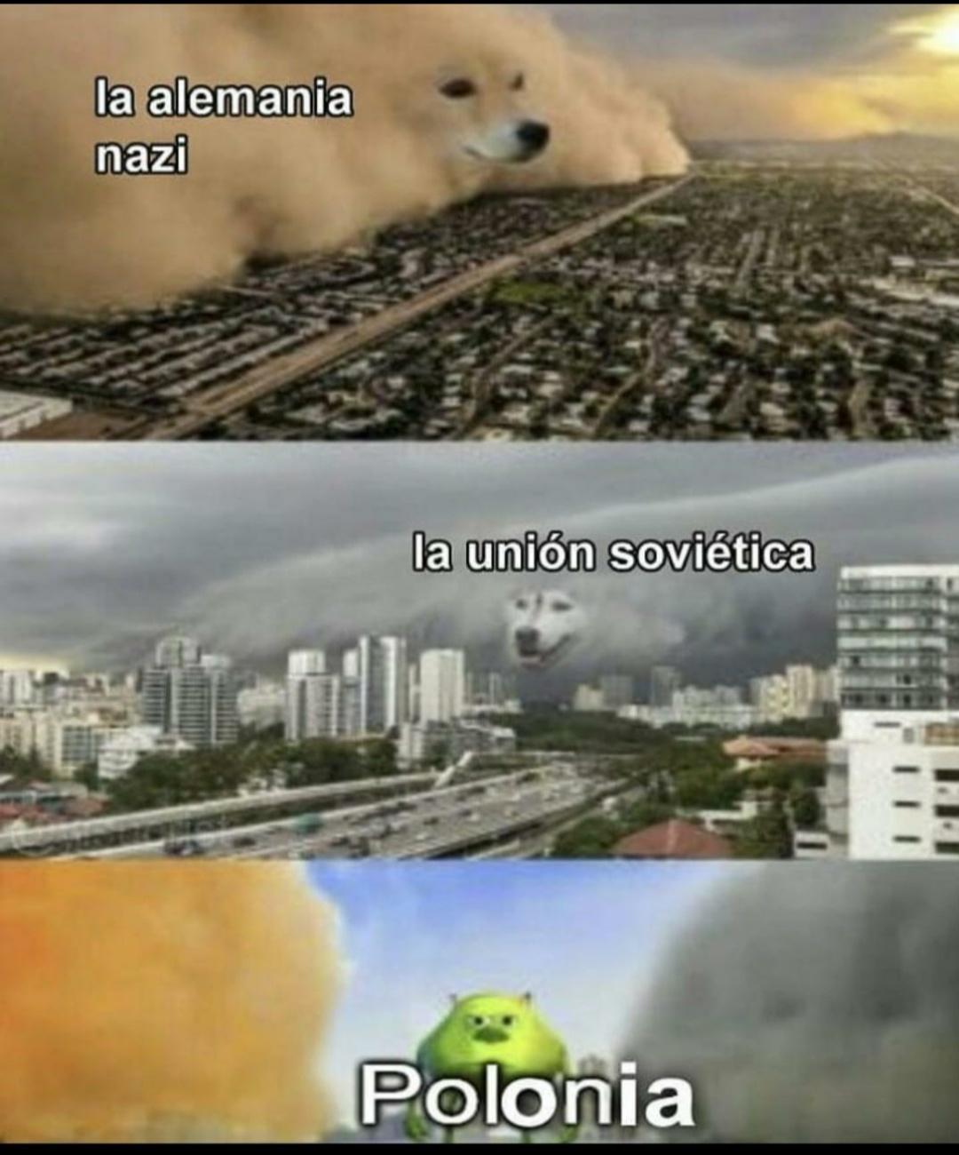 Polonia: XD - meme
