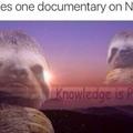 I am a sloth
