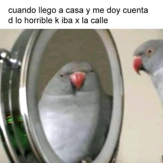 Chale - meme