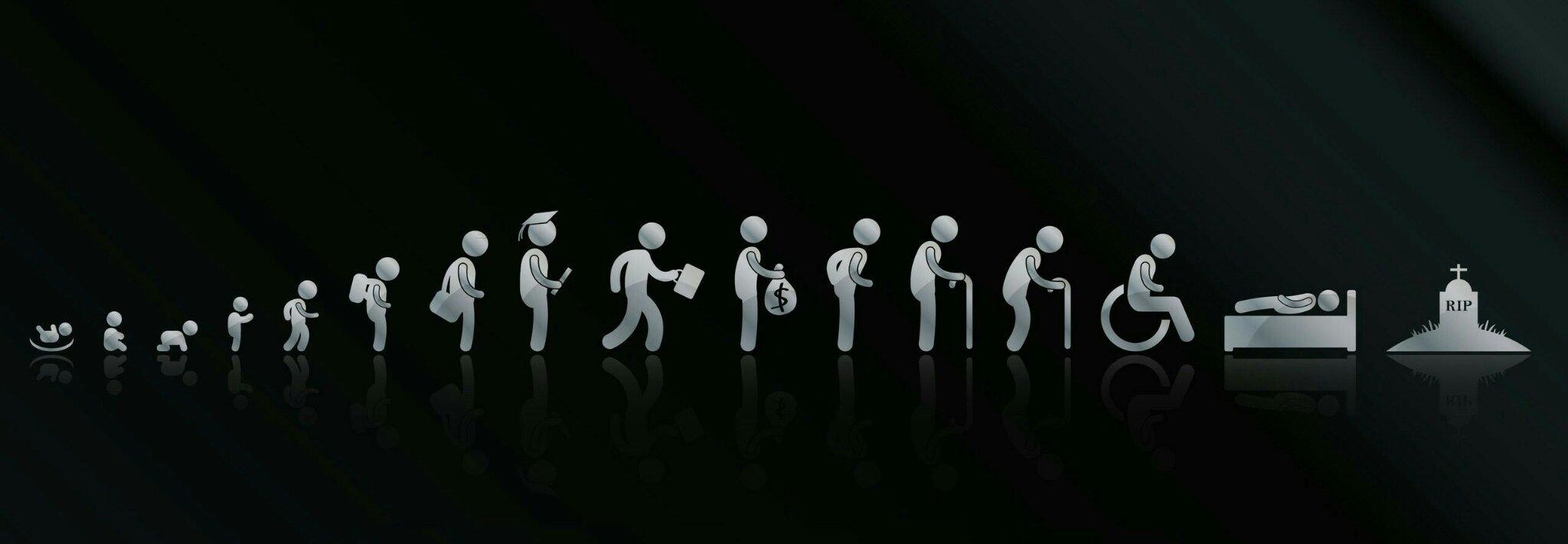 Human life cycle - meme