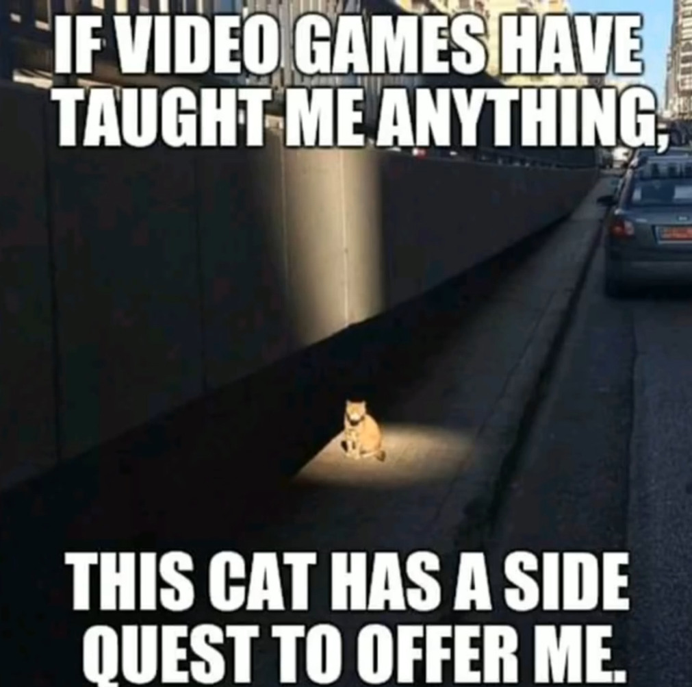 I'm betting the side quest is to feed it - meme