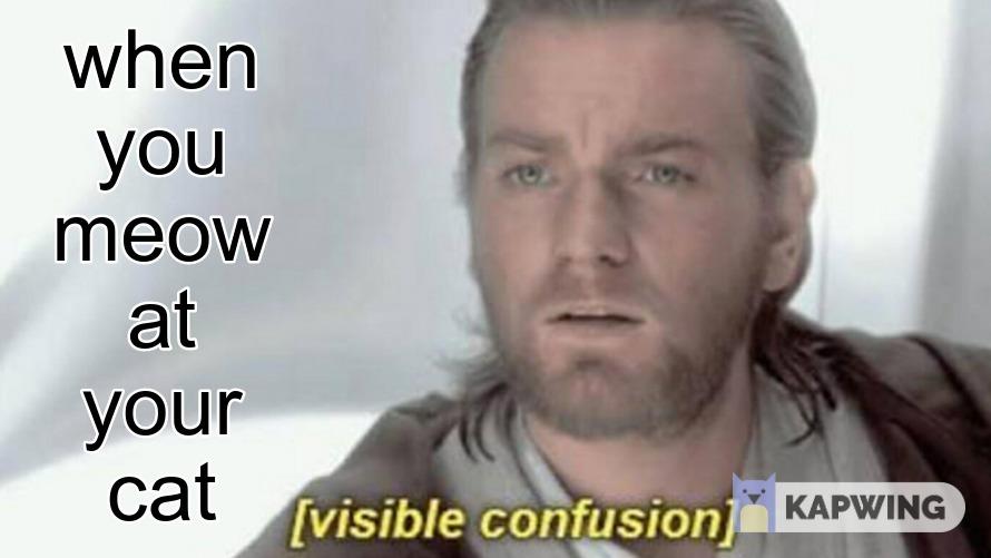 star wars memes tho