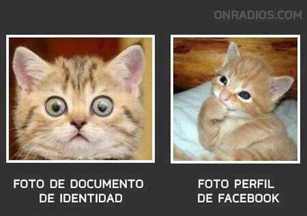 En Facebook todos se hacen los lindos:^ - meme