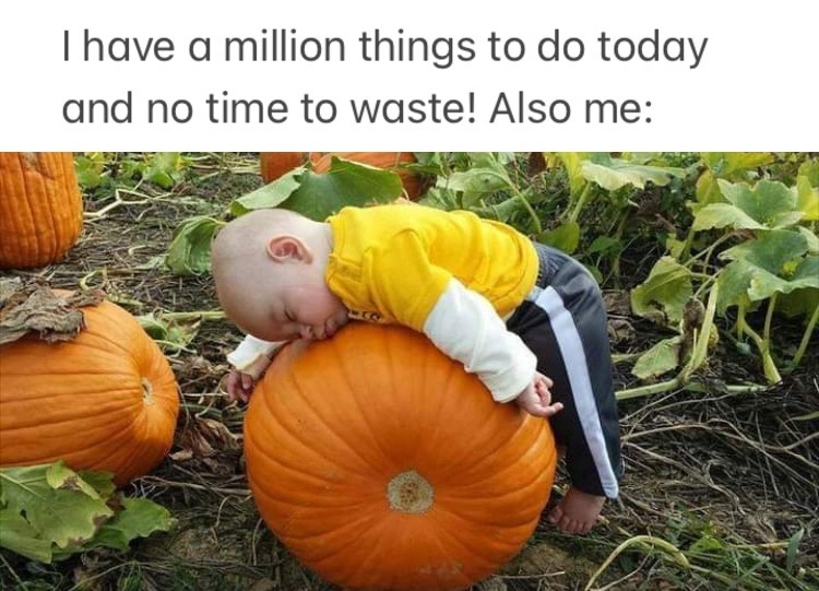 sleep good, work bad - meme