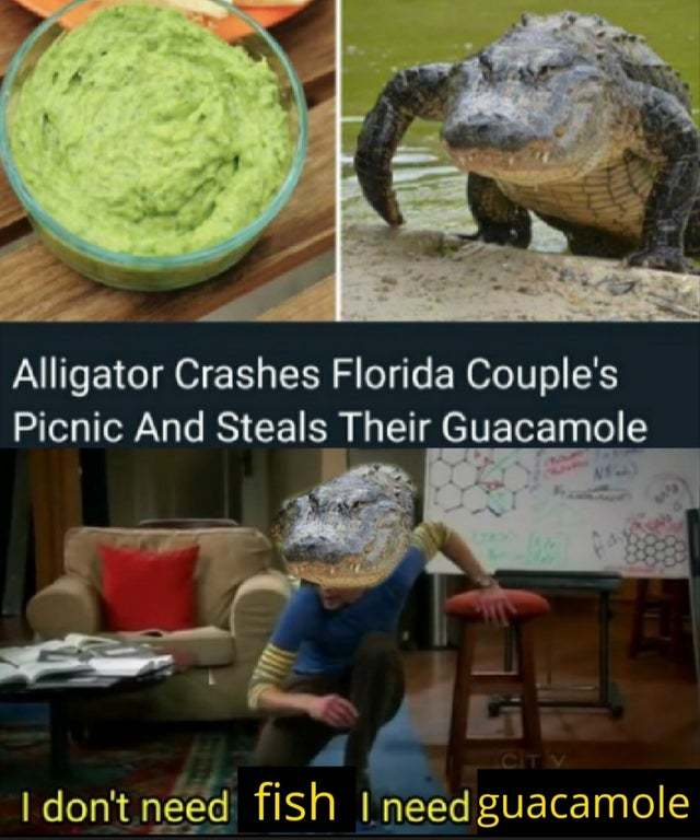 Alligator crashes Florida couple's picninc and steals their guacamole - meme