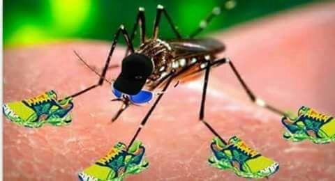 zika vírus - meme
