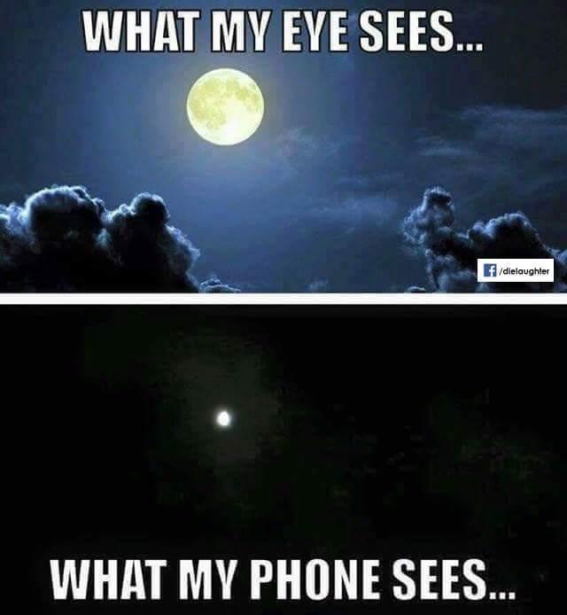 The phone - meme