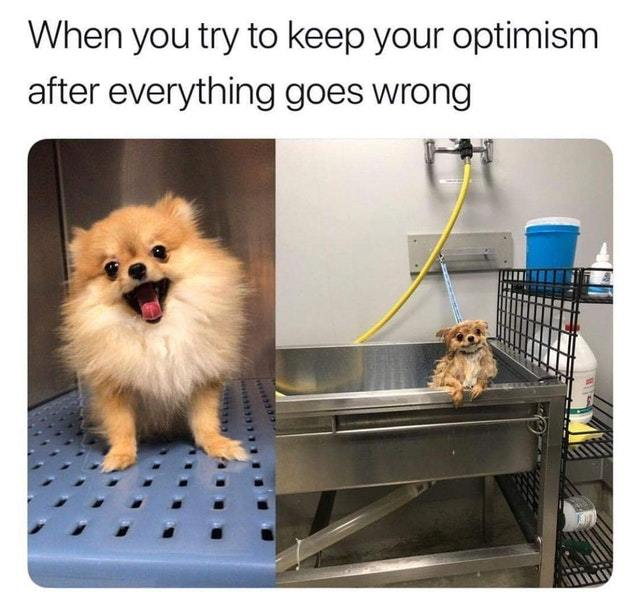 When you try to keep your optimism after everything goes wrong - meme