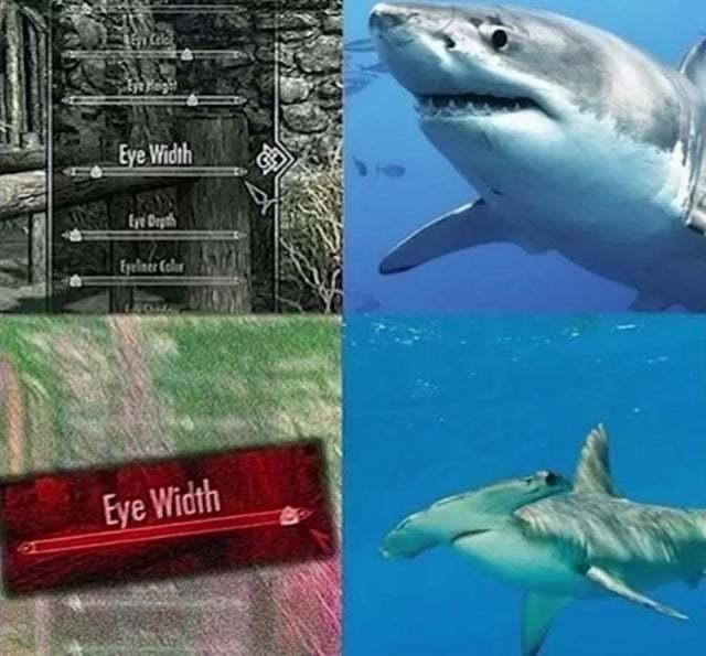 Hammer sharks be like - meme