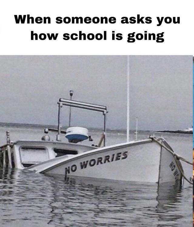 When someone asks you how school is going - meme