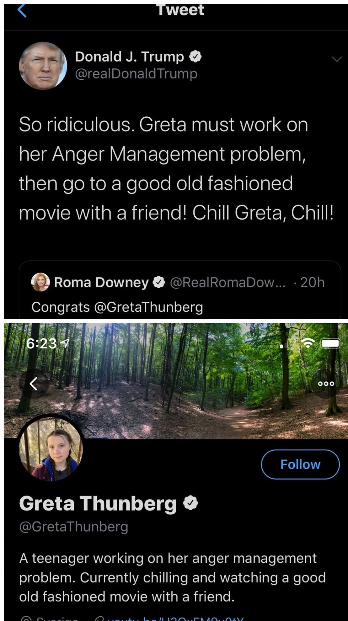 Greta is kinda awesome - meme