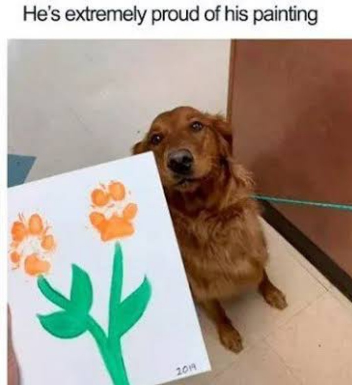 Artistic pup, right there - meme