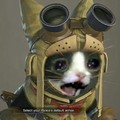 This is the look the most useless palico makes