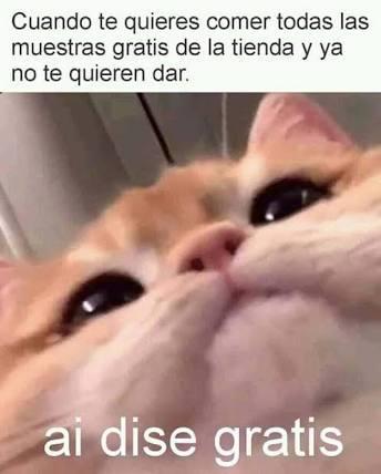 16 - meme