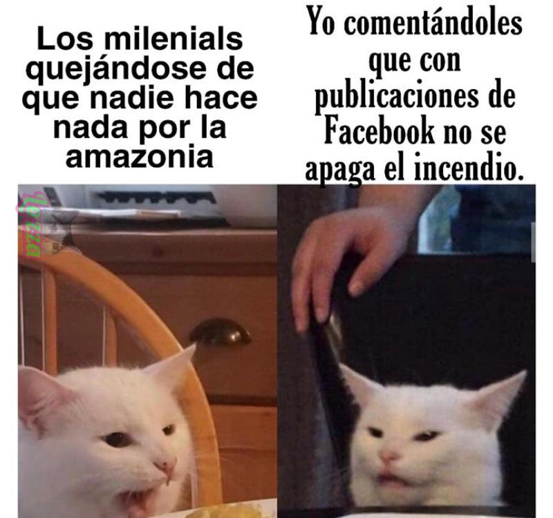 Los milenials quejándose - meme