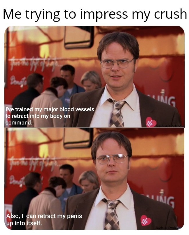 Mr. Dwight Schrute - meme