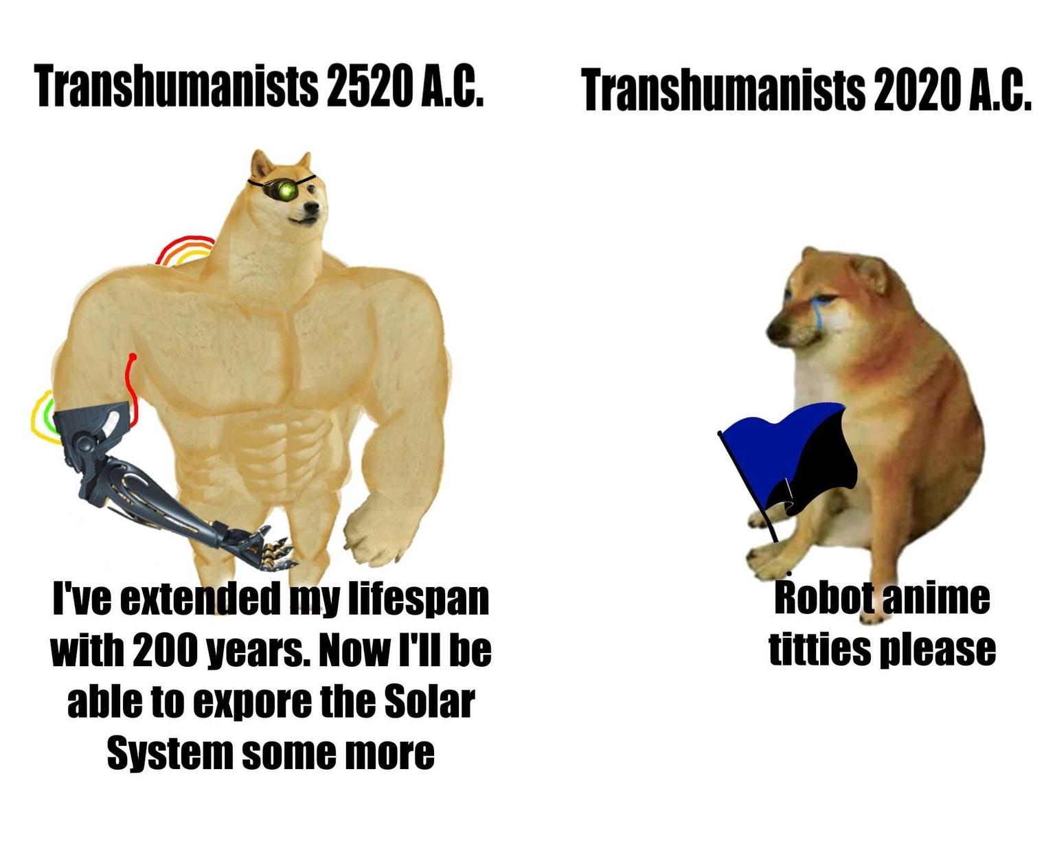we perro robot - meme